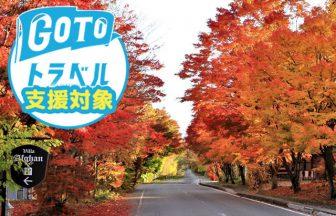 GOTO美し森メイン画像