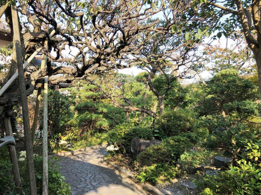 鎌倉殿の13人のコース